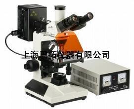 正置熒光顯微鏡/熒光顯微鏡/電腦熒光顯微鏡/巴拓供