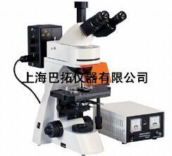 无限远荧光显微镜/正置荧光显微镜/荧光显微镜报价/巴拓供