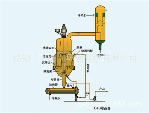 DTB型结晶器 强制循环蒸发结晶器 蒸发器结晶器 格翎供应