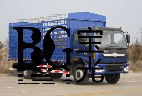 合肥二手貨車買家電話|寶光熱線13966684833|寶光供