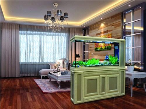 青島免換水魚缸供應商|免換水魚缸價格|陸秀琴供