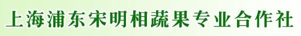 上海浦東宋明相蔬菜專業合作社