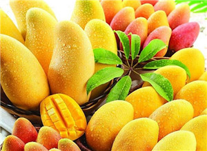 上海酒店水果配送 上海酒店水果配送值得信赖 震果供