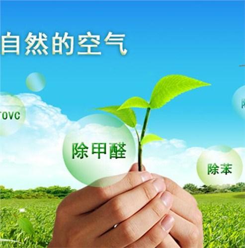 环保除甲醛公司-无锡除甲醛公司-环保除甲醛解决方案-典雅供
