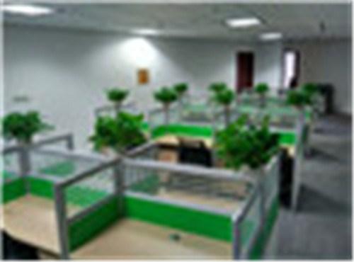 浦东办公室植物租赁 浦东办公室植物租赁电话 信耶供