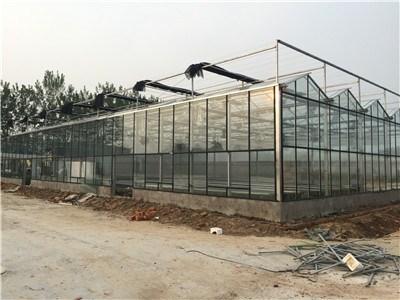 上海玻璃温室大棚厂家/玻璃温室大棚厂家现货批发/智域供