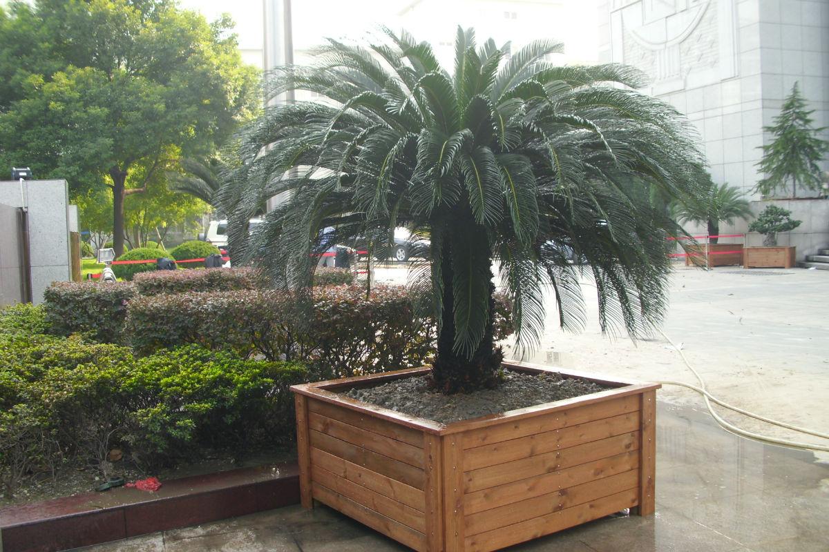 上海防腐木景观设计施工 防腐木景观设计施工价格实惠 森凯供