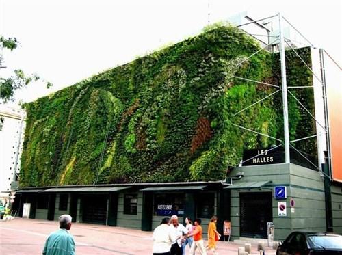 上海室外仿真植物墙制作 外仿真植物墙设计费用 鑫赞供