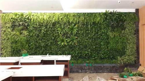 上海植物墙公司_上海植物墙公司_上海手绘墙公司